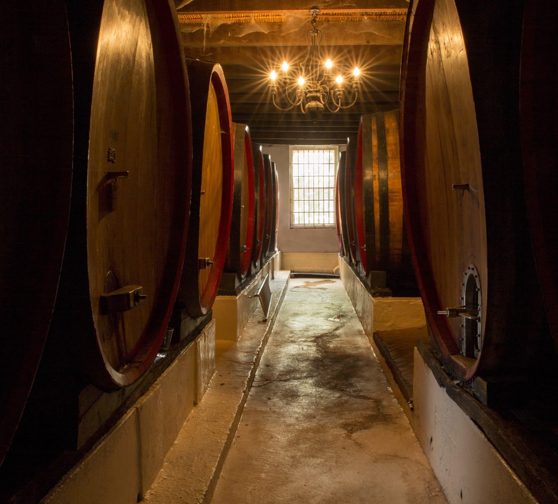 best wine farms stellenbosch