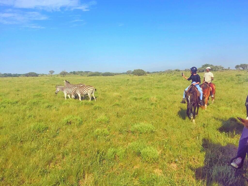 Horse Riding African Safari