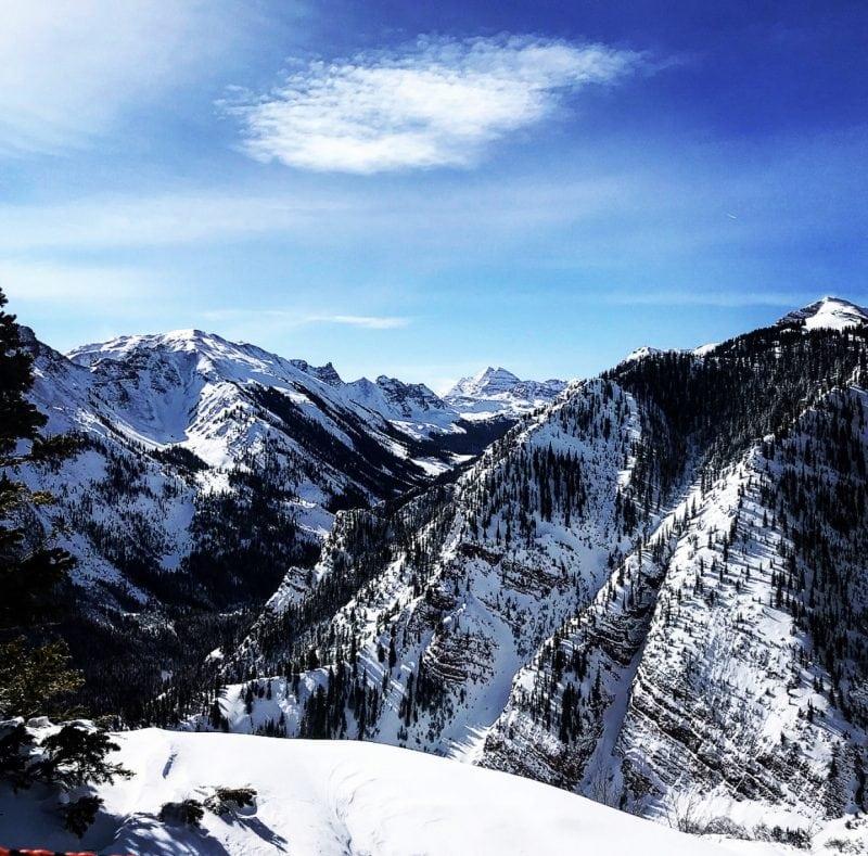 Aspen in Winter