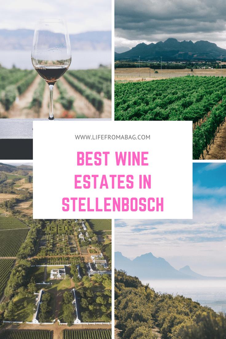 best wineries in stellenbosch
