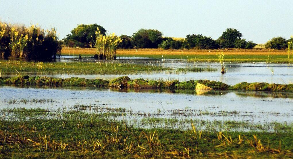 Wetlands in Africa