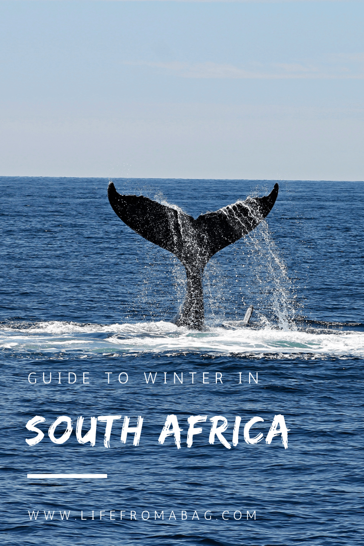 Winter in South Africa