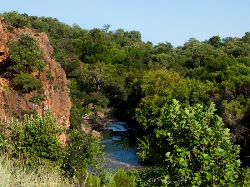 Hiking Trails in Johannesburg